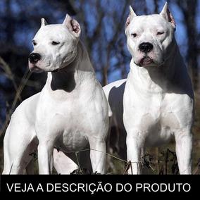 Dogo Argentino Como Criar Seu Filhote (frete Gratis) Brinde