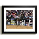 Quadro Rodeio Show Arena Festa Peao Touro M41 Decoracao Sala