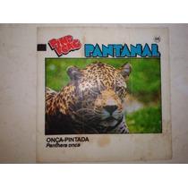 Figurinha Ping Pong Pantanal - N° 88