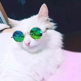 Óculos De Sol Pet - Gatos E Cachorros Pequenos - Roupa Pet