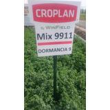 Semilla De Alfalfa Croplan 9911 Saco 20kg Peletizada Y Cer