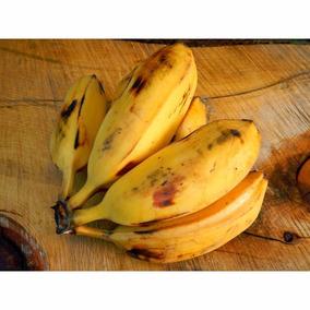 2 Hijuelos De Plátano Bolsa