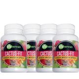Kit Com 4 Cactus-fit 60cps 500mg Bio Hervas