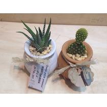 Mini Jarro Decorado Para Recuerdos Con Cactus Miniatura.