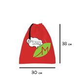 Morral Bolsa Ecologica 38x 30 Cms Con Cordon 1 Pieza