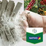 Nativo ( Fungicida )