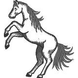 Matriz De Bordado Cavalo #18 Animais Rodeio