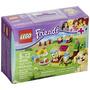 Lego Amigos 41088 Puppy Training (fuera De Serv Envío Gratis