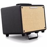 Amplificador De Guitarra Eletroacustica Y Voz Ibanez T30 Xlr
