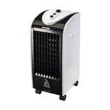 Climatizador 3 Velocidades Capacidade Para 4l Clm-01 110v