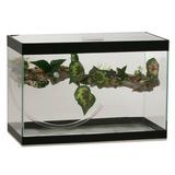 Terrário Aquaterrário Para Tartaruga Com Cascata - Tamanho 2