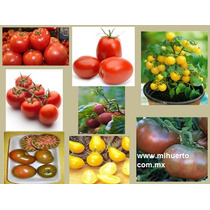 Combo Semillas Jitomate Tomate 8 Variedades