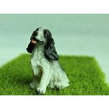 Cocker Spaniel Miniatura Perfeito Pet Shop Decoração Cão