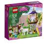 Lego Original 41065 Rapunzel Mejor Dia 145 Piezas 5-12 Años
