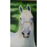 Quadro Tela Com Moldura =cavalo Andaluz Branco