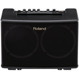 Amplificador De Guitarra Y Voz Roland Ac40