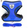 Azul XL