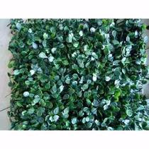 Grama Artificial Tipo Buchinho 0,25 X 0,25 - Muro Inglês