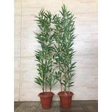 Planta Arfificial Bambu Reto Kit 2 Plantas 100cm Decoracao