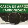 Casca De Arroz Carbonizada - Substrato Para Plantas (pitaya)