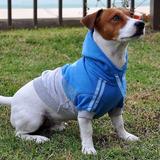 Buzo Ropa Perro Gato Mascotas Vestimenta Indumentaria Canina