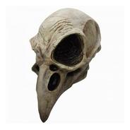 Máscara De Cuervo De Cráneo. Día De Muertos O Halloween