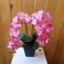 Arranjo De Flores Artificiais - Orquídeas Rosa Tam: 55x32