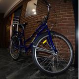 Bicicleta Peretti Agosti Beach Rodado 26