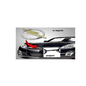Eixo Trazeiro Peugeot 206 Colocado Mais Dois Amotecedor Traz