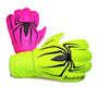 spider: bicolor
