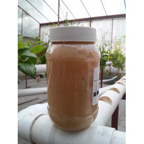 Jabón Potasico - Insecticida Orgánico - Envío Gratis