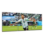 Cuadro Triptico Messi Argentina Festejando 90x40cm