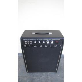 Amplificador Giannini 40 W Rms Falante De 12
