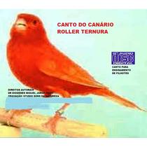 Canário Roller Ternura Cd De Canto -frete Gratis Todo Brasil