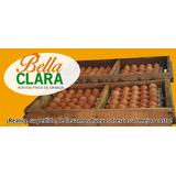 Oferta Cajon Huevo Nº1 Sólo $1150 Huevos Finos De Granja