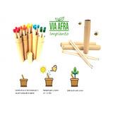 Lápiz Plantable Souvenir Semillas Lapiz Ecolapiz