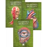 Tratado De Anatomía Humana De Quiroz Tomo 1, 2 Y 3 Pdf