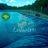 Lona 7x4,5 P/ Lago Tanque Rede De Peixes Manta Pppe Az/pr