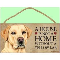 Una Casa No Es Un Hogar Sin Labrador Retriever Amarillo - 5