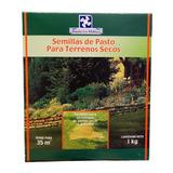 2kg Semilla Para Pasto Terrenos Secos Rancho Los Molinos