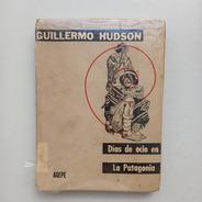 Días De Ocio En La Patagonia Guillermo Hudson Agepe
