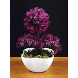 Bonsai Colorido Mini Árvores Artificial Plantas Arranjo Flor