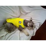 Camiseta Deportiva Para Mascota Excelente Calidad