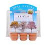 Mini Estufa Vaso Sementes Planta Ipes Amarelo Rosa Branco