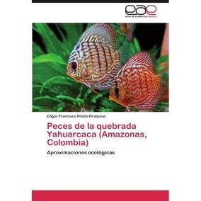 Peces De La Quebrada Yahuarcaca (amazonas, Colo Envío Gratis