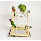 Parrot De Madera Parakeet Derecho Cockatiel Cacatúa Mesa Pe