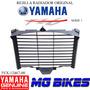Rejilla Radiador Yamaha Fazer 600 Fz6 S1 Orig En Mg Bikes