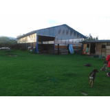 Vendo O Permuto Espectacular Lote En Chia Casa, Zona Verde