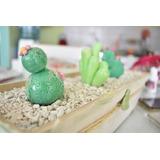Cactus Porcelana Fria.. X 3 $220