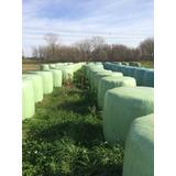 Silopack De Alfalfa Excelente A Precio Increíble